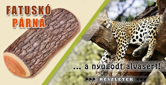 Fatuskó Banner2
