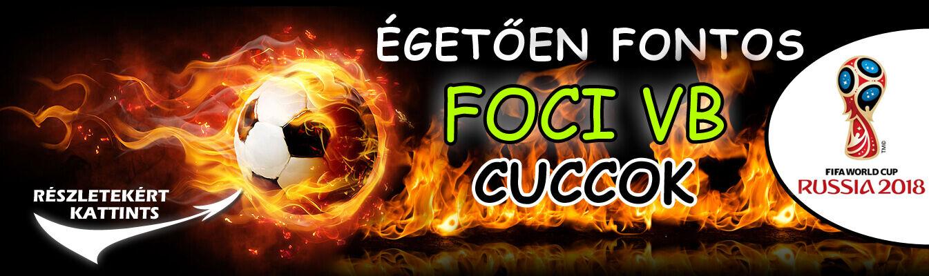 Foci VB 2018 banner