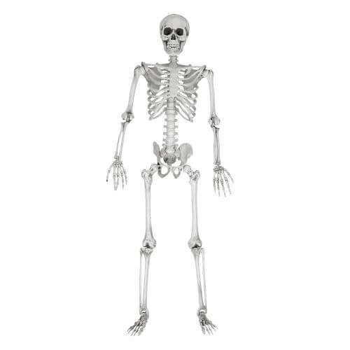 Az életnagyságú csontváz Halloween bulik ötletes kiegészítője